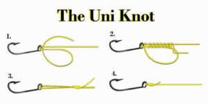 how to tie a uni knot