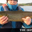 Committee appointed in Usher Lake coarse fishery transfer