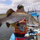 Spouse jumps in to preserve substantial fish, amusing fishing video clip