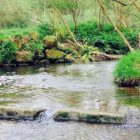 Rochdale Information | Activity Information | Coarse fishing river shut time – general public session