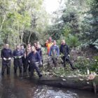 WILD TROUT Have confidence in CHARITY AUCTION: eighth – 17th MARCH 2019