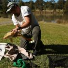 For the really like of carp: Carp fishing fanatic speaks out more than herpes virus issues and alternate works by using for the pest fish