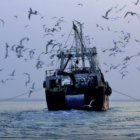 Does West Africa Profit from International Trawling?