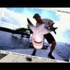 Huge Snook Monster Allow Fishing Sharks and Fishing Bloopers
