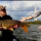 35 Fishing Fails, Bloopers and Humorous Fishing Films from the Catfish &amp Carp