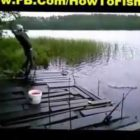 Most effective Fishing Fails 2015 | Humorous Fish