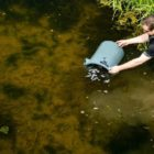 Restocking of River Witham proceeds right after air pollution incident whick killed far more than 100,000 fish