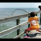 Boy Capture Fish – six Calendar year catches substantial fish ! #FishingNet