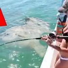 five Surprising Fishing Times Caught On Digital camera!
