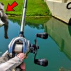 Mad Puppy Attempts To STEAL Our FISH even though BASS Fishing!!!