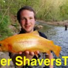 Trout Fishing West Virginia&#39s Reduce Shavers Fork
