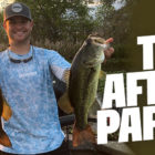 Wherever do bass go right after they spawn?