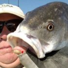 Grand Strand Fishing Report for the weekend May well 31 to June two