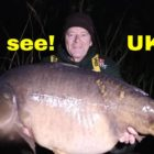 Spring carp fishing suggestions #four, 50lb+ carp and many others!