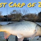 Carp Fishing Fox River in April | Early Spring Carp Fishing in Illinois