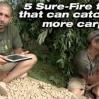 five Positive-Fireplace information to capture additional carp – Ali Hamidi &amp Simon Scott | Korda Carp Fishing