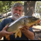 How to capture CARP! &quotWith Sweet Corn&quot