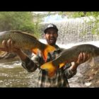 CARP FISHING Underneath An Remarkable Concealed SPILLWAY!!!!