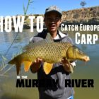 HOW TO: Capture European Carp | Murray River, SA