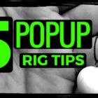 five CARP FISHING POPUP RIG Guidelines 😀