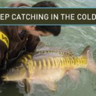 Carp Fishing – Continue to keep Catching In The Chilly!