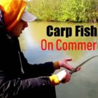 Carp Fishing on Commercials in April