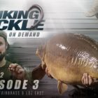 Wondering Deal with OD Year two Episode three: Linear – Danny Fairbrass &amp Lawrence East | Korda Carp Fishing