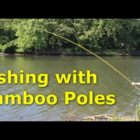 Fishing with 30&#39 bamboo poles – pole fishing for carp