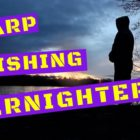 CARP FISHING IN SPRING 2017 OVERNIGHTERS