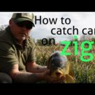 How to catch big carp using zigs~feature finding tips