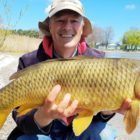 Shore Fishing for Carp – A Easy Set up for Quick Success | Boatless Angler