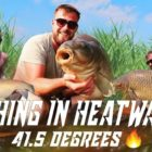 CARP FISHING IN EUROPE Most popular At any time HEATWAVE 40+levels 48 fish haul Parco Del Brenta Italy 🇮🇹