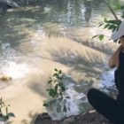 Most effective Woman Fishing For Big Fish in Very small Muddy Creek