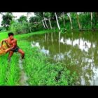 internet fishing।Big fish searching by solid net।Net fishing in the village(portion-86)