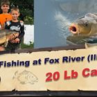 Catching 20 Lb Carp at Fox River IL