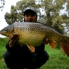Large Wintertime Carp Fishing in Australia | Element two/two