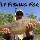 Kayak Fly Fishing for Carp – Memorial Working day 2019 – The Fly Male