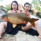 Gorgeous Female Fishing  Survival ability cooking fish in forest | Wilderness Know-how Survival Time