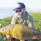 Bluff fisherman amped to toss his rod at carp common