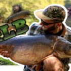 ***** CARP FISHING ***** 44LB Mirror taken off the floor on floaters at a chaotic park.