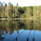 French Carp Fishing at La Fonte