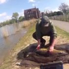 City fishing london – Huge carp from london parks portion two