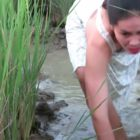 Stunning lady fishing on the rice subject-Catching massive fish-How to fishing(101))