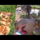 Capture and Cook dinner CARP!