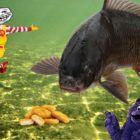 Will it Capture Carp? | McDonald&#39s Rooster Nuggets
