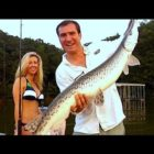 Capture a Enormous Gar with Female Fishing Lake Lanier