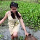 Wow.! Incredible stunning female Fishing in Cambodia – How to Fishing – By New York ( portion 194)