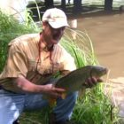 Recommendations on Carp Fishing from Shore Utilizing Corn and the T-Change