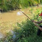 Survival Competencies – Unbelievable Woman Fishing vs. Huge Eel Fish