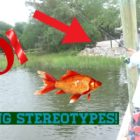 Fishing Stereotypes!